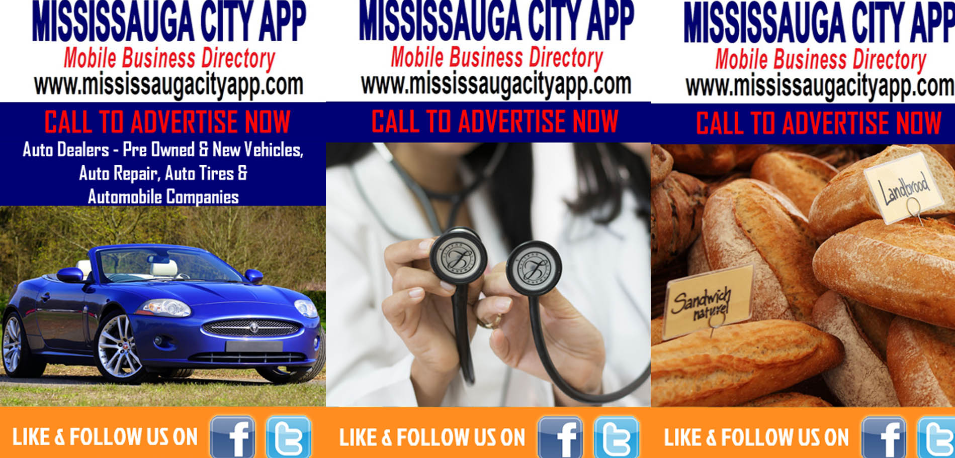 mississaugacityapp-businessdirectorythewebmiracle